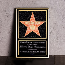 Звезда 'You are a Hollywood star'