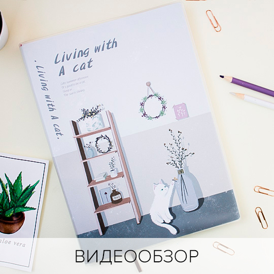 Блокнот 'Living with a cat'  / Living room
