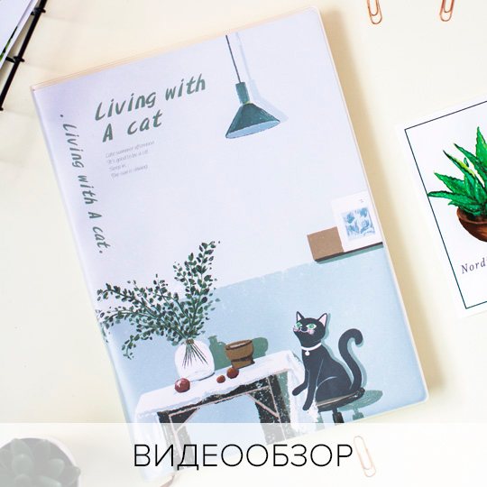 Блокнот 'Living with a cat'  / Kitchen